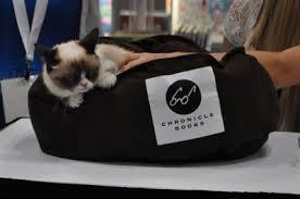 Grumpy Cat Chronicle