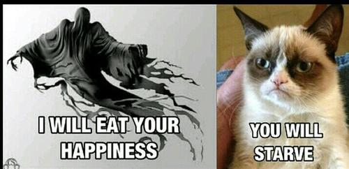 Grumpy Dementor