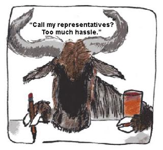 Complacent Wildebeest hassle